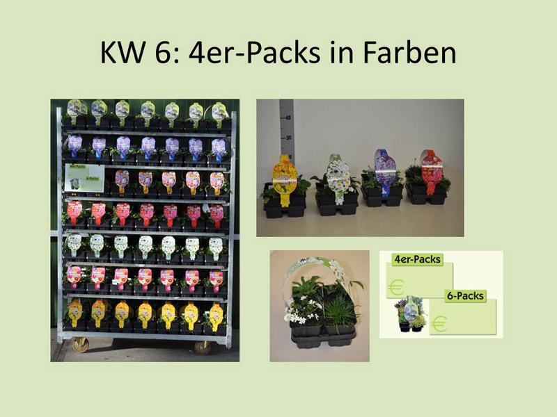 kw-6-4er-packs-verkl